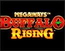 слот buffalo rising